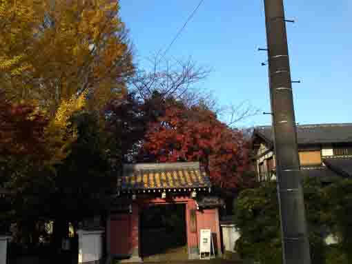 the sanmon gate of Ekoin in fall