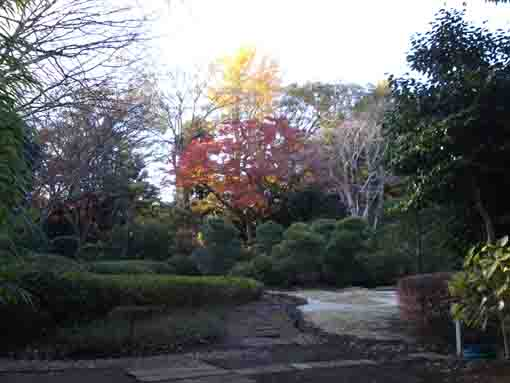 the garden in Ekoin Temple in fall