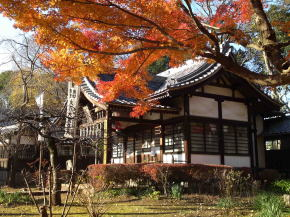 Daikokudo and colored leaves