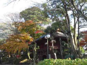 The Niomon Gate and the colored leaves