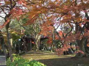 Mamasan Guhoji Temple in fall