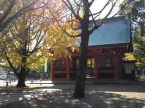 the back of the Zuishinmon Gate in fall