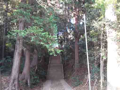 the approach road to Komagata Grand Shrine