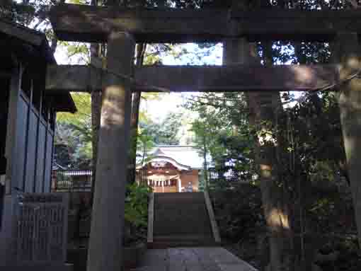 the second torii gate of Komagatadaijinja