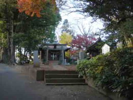 Konodai Tenmangu Shrine in fall