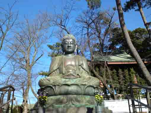 the statue of Shaka Nyorai in Nakayama