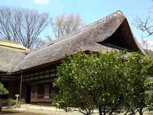 the thatched roof in Nanushi Yashiki
