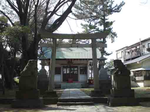 the main hall of Hie Jinja Shrine