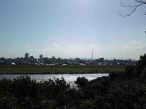 the view from Satomi Park to Tokyo