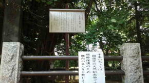 the guide post about Senbon Icho Tree