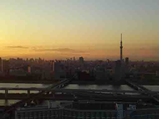 Tokyo Skytree in the evening