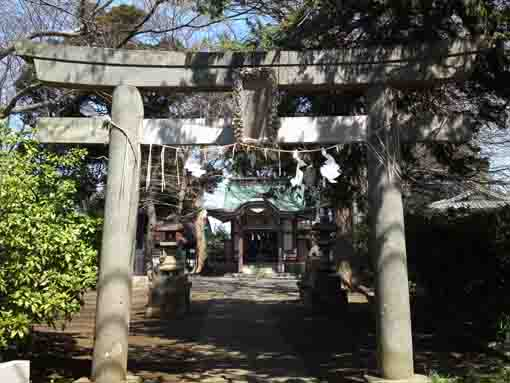 the torii gate of Wakamiya Hachimangu