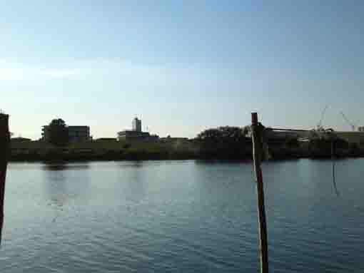 Edogawa River from the ferry at Yagiri