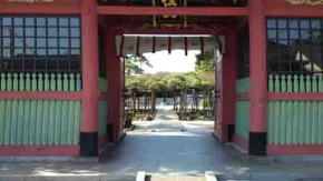 viewing for Yoko no Matsu through the gate