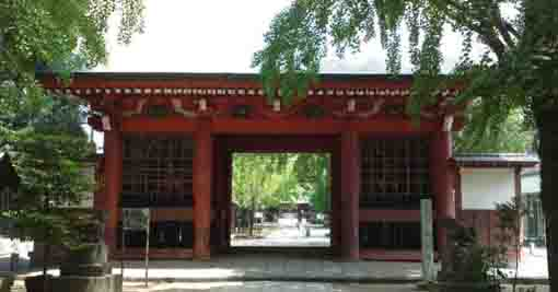 the zuishinmon gate of Hachimangu